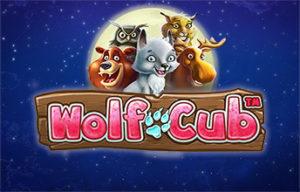 wolf cub casino netent norge