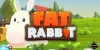 push gaming fat rabbit